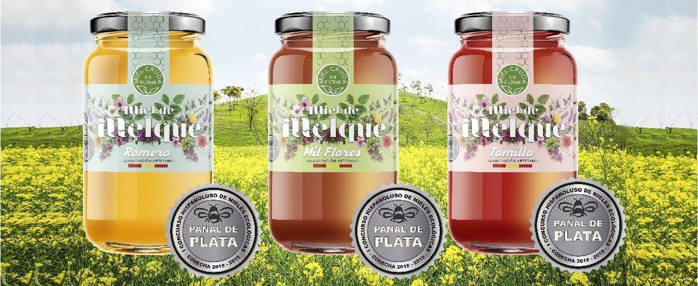Spring honeys: rosemary honey, thousand flower honey, thyme honey
